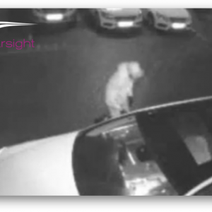 car theft on cctv