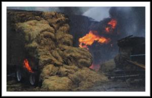 Arson on Farms