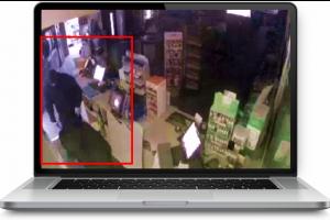 burglars caught on CCTV